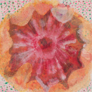 Lion's Mane (Jellyfish) (2)